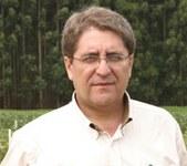 prof-dauri-tessmann