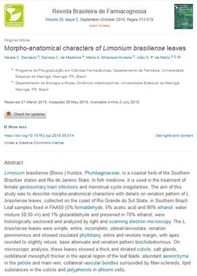 limonium naiara